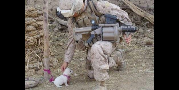 soldier-with-dog.jpg